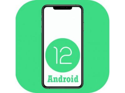 Когда Google выпустит Android 12?
